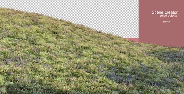 3d-weergave van verschillende grassen