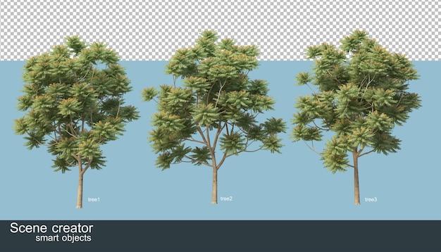 3d-weergave van verschillende soorten bomen