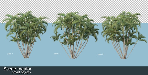 3d-weergave van verschillende soorten palmbomen