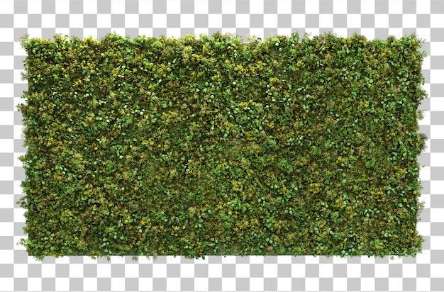 3d-weergave van verticale tuin