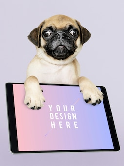 Aanbiddelijk pug puppy met digitaal tabletmodel