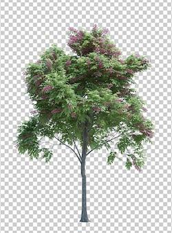 Aardobjecten de boom isoleerde wit