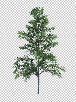 Aardobjecten de boom isoleerde witte ruimte