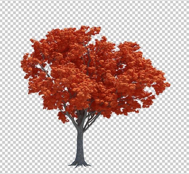 Aardobjecten geïsoleerde boom