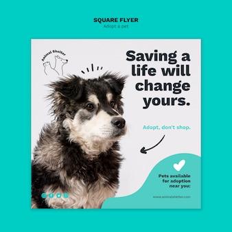 Adopta un volante cuadrado para mascotas