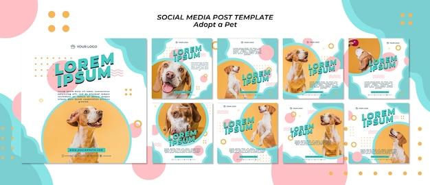 Adopteer social media postsjabloon voor huisdieren
