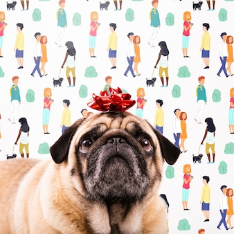 Adorable perro con maqueta de nudo de regalo