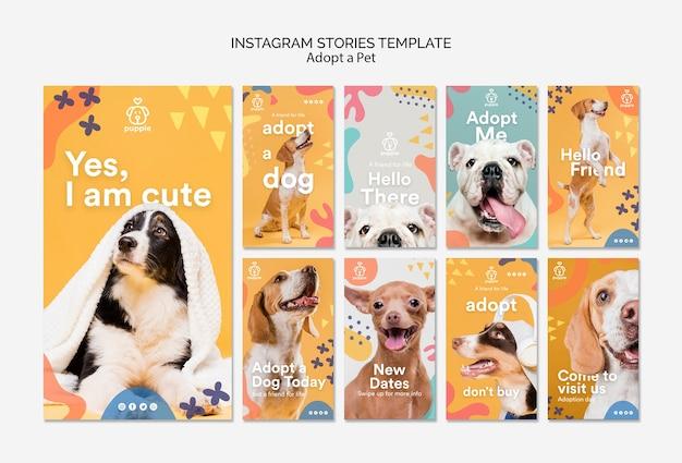 Adotta storie di instagram per animali domestici