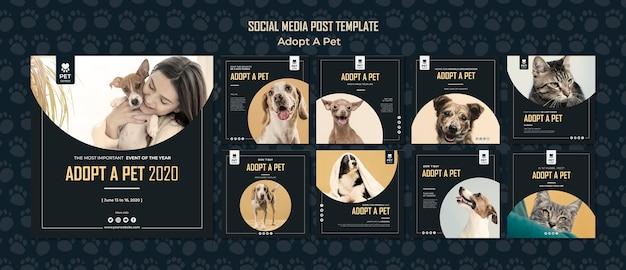 Adotta un modello di posta sociale dei social media di concetto dell'animale domestico