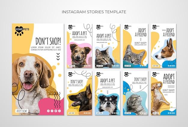 Adotta un modello di storie instagram per animali domestici