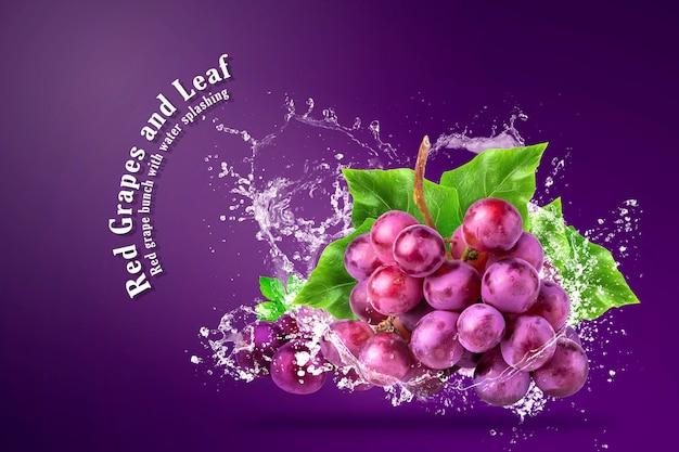 Agua que salpica en las uvas rojas frescas sobre fondo rojo.