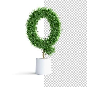 Alfabeto de árbol verde letra q