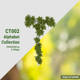 Alfabeto vertical de cocotero y hojas verdes y blancas