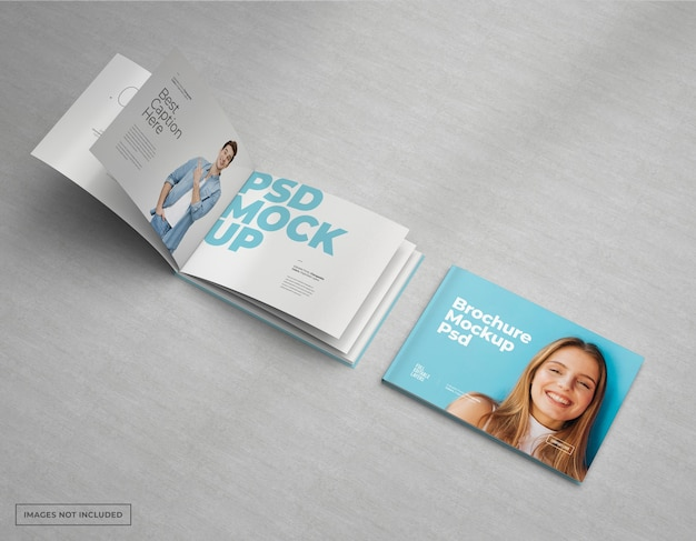 Amplio catálogo de maquetas de folletos, diseño de revistas y folletos