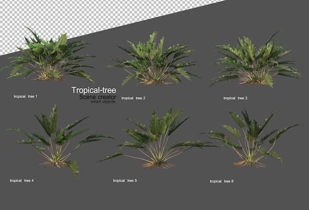 Árboles y plantas tropicales en renderizado 3d