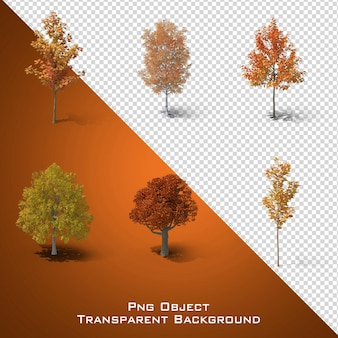 Autumn tree file vijf