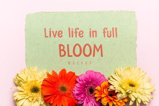 Bloeiende bloemen met motiverende tekst