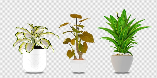 Bloemen in vaas in het 3d teruggeven geïsoleerd
