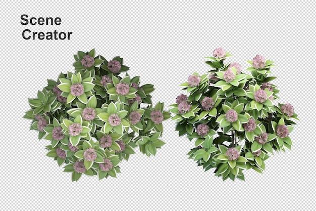 Bloemenvaas uitzicht van de maker van de lentescène