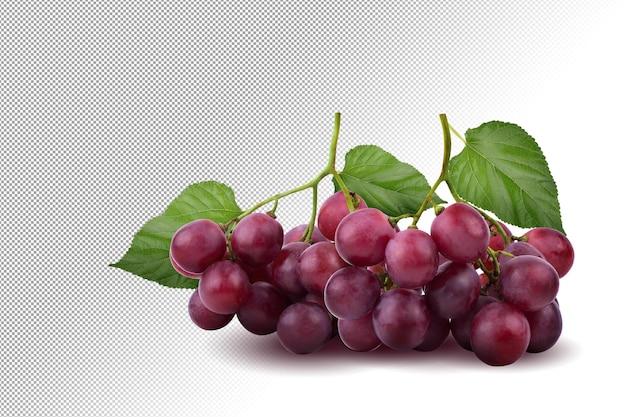 Bossen van verse rijpe rode druiven op alpha achtergrond.