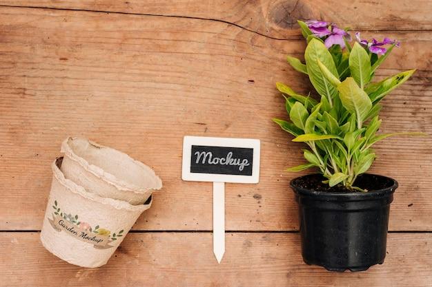 Bovenaanzicht bloemen in een pot kopie ruimte