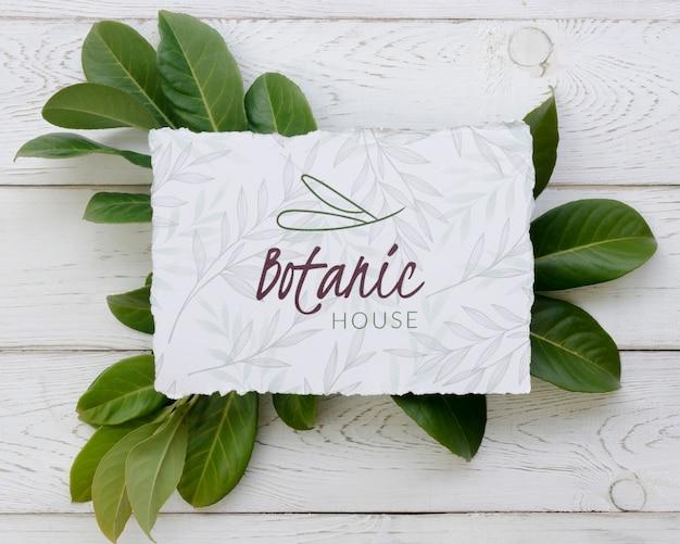 Bovenaanzicht botanisch huis mock-up concept