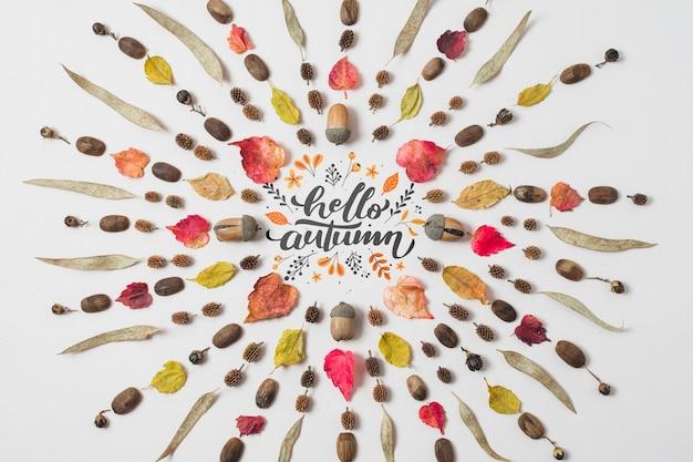 Bovenaanzicht cirkelvormig frame met kleurrijke bladeren