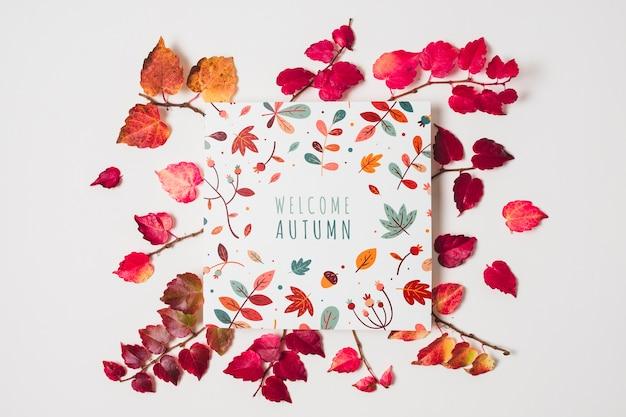 Bovenaanzicht rode bladeren op witte achtergrond