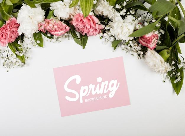 Bovenaanzicht van de lente anjers