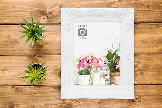 Bovenaanzicht van frame met vetplanten