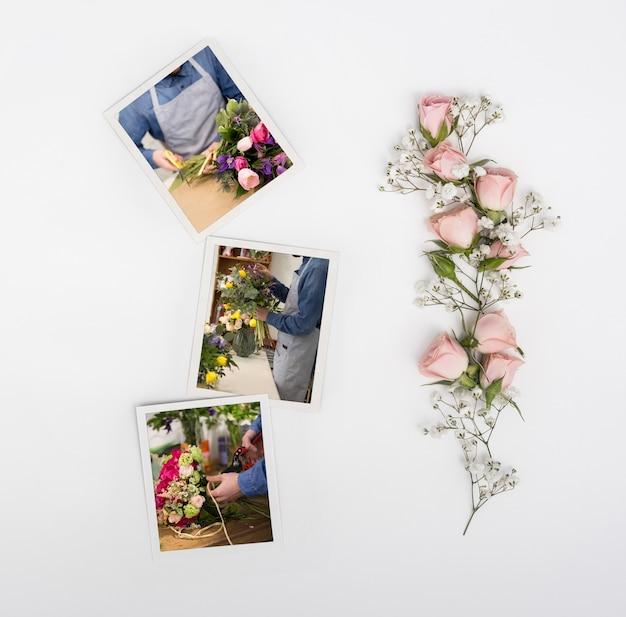 Bovenaanzicht van lente rozen met foto's