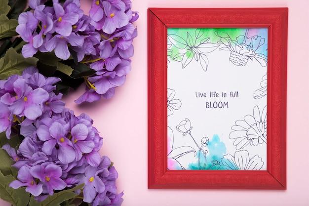 Bovenaanzicht van paarse phlox en frame