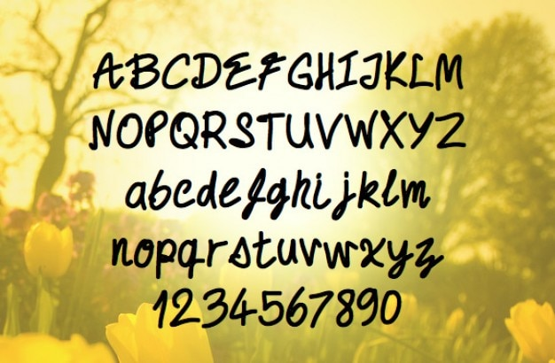 Caratteri scritti a mano
