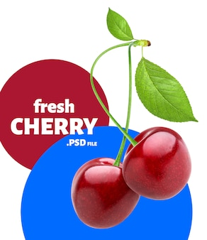 Cherry berry banner