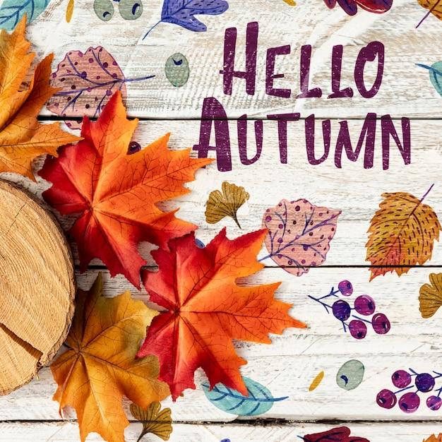 Ciao autunno con foglie secche e ceppo