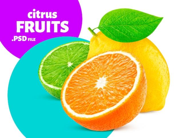 Citrusvruchten geïsoleerd, vers voedsel banner