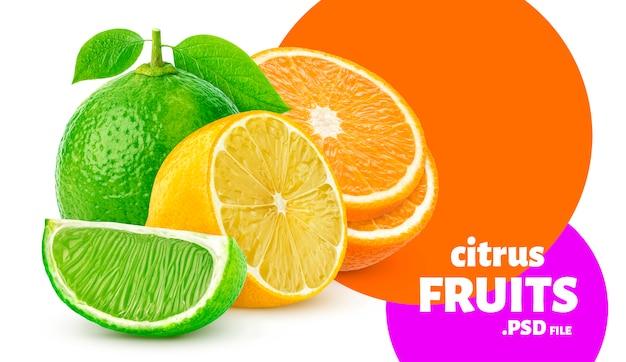Citrusvruchten geïsoleerd