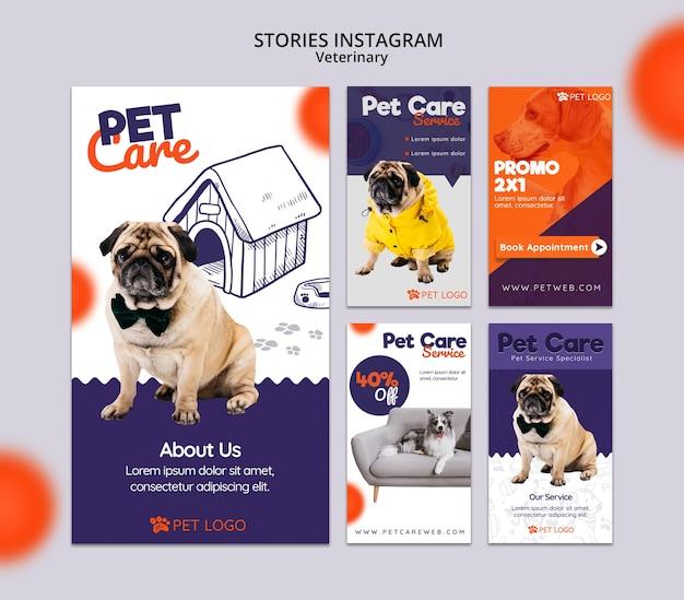 Colección de historias de instagram para el cuidado de mascotas