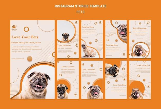 Colección de historias de instagram para tienda de mascotas con perro