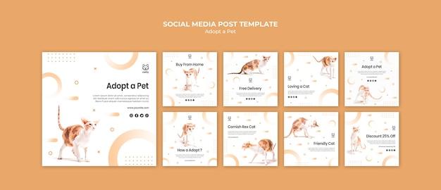 Colección de publicaciones de instagram para adoptar una mascota