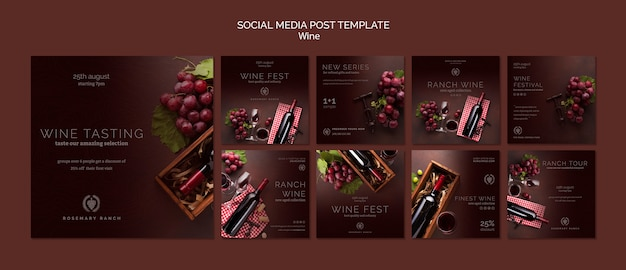Colección de publicaciones de instagram para cata de vinos