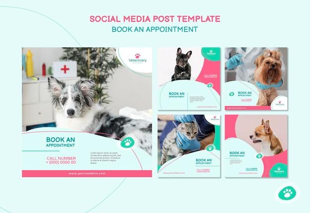 Colección de publicaciones de instagram para cita veterinaria
