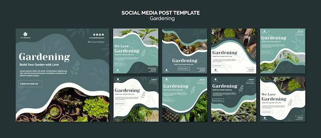 Colección de publicaciones de instagram para jardinería