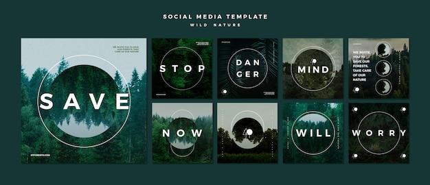 Colección de publicaciones de instagram para la naturaleza salvaje