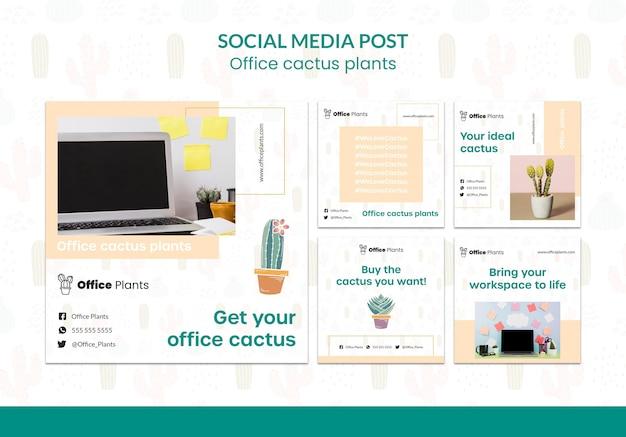 Colección de publicaciones de instagram para plantas de espacio de trabajo de oficina