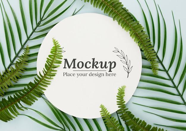 Composición de hojas verdes laicas planas con maqueta