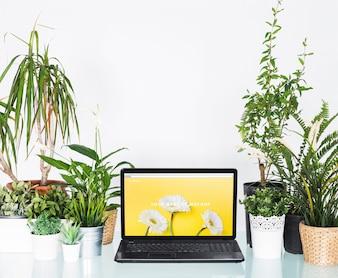 Conceito de jardinagem com laptop
