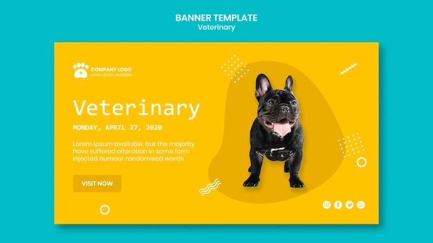 Concepto de plantilla de banner veterinario