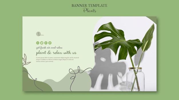 Concetto di modello di banner di piante