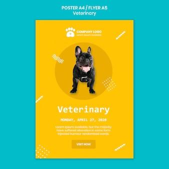 Concetto di modello di volantino quadrato veterinario